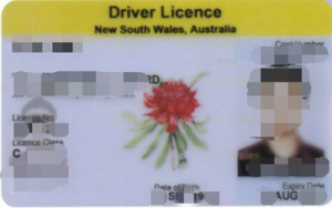 驾照考试,驾照翻译,翻译驾照