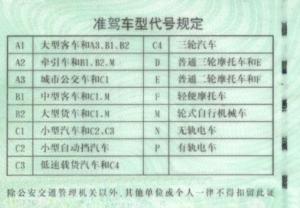 中国驾照翻译件,驾照翻译